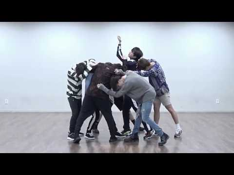 BTS FAKE LOVE mirrored Dance Practice