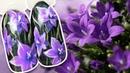 🌺 Полевые Колокольчики 🌺 Цветочный дизайн ногтей гель лаком к Летнему Маникюру Простой дизайн