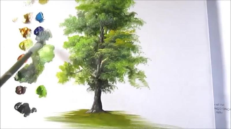 Многообразие Зелени Деревьев. Урок 2.
