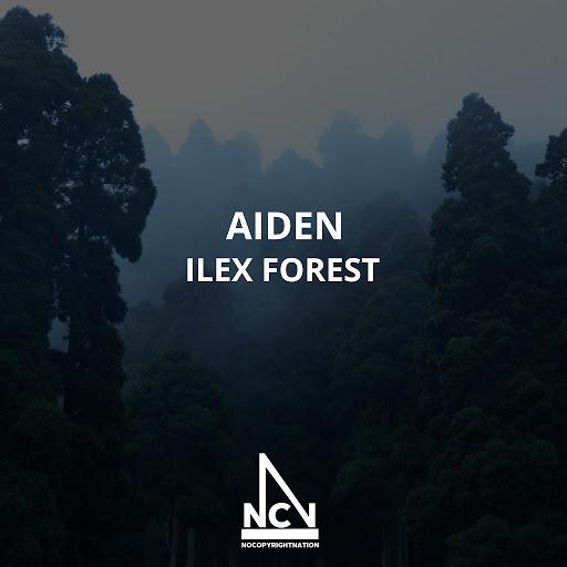 Aiden альбом Ilex Forest