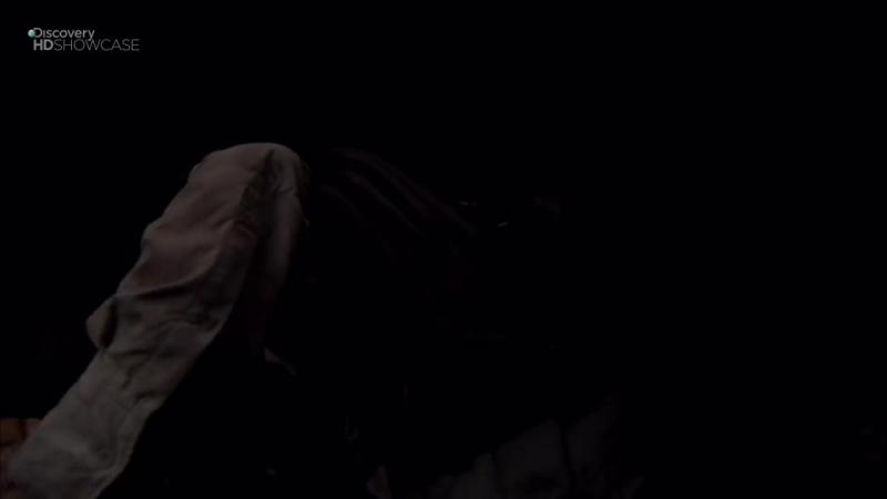 [Discovery HD Россия] Выжить любой ценой Man vs Wild HD сезон 4 эпизод 3