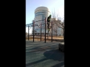 Street workout muscle up's от MishkaMultiGYM