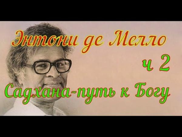 Энтони де Мелло Свобода и любовьчасть 2 (NikOsho)