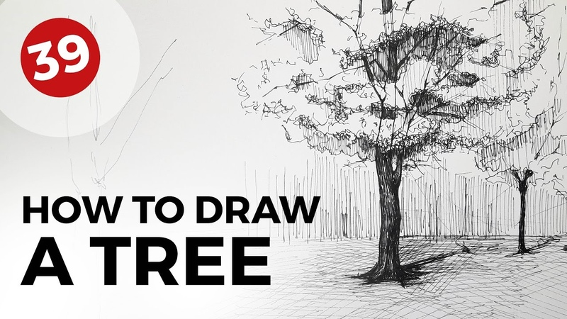 How to Draw a Tree | Daily Architecture Sketches 39