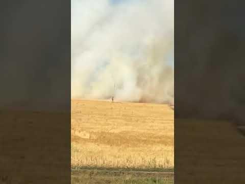 большой пожар в Ульяновской области