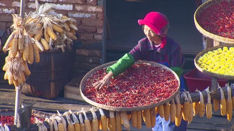 Rural tradition of shaiqiu in Wuyuan, China