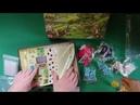 41 1 ClansOfCaledonia Распаковка игры Кланы Каледонии и наши сельские игры