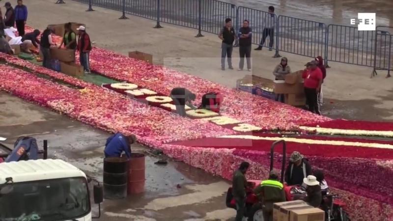 Ecuador busca romper récord Guinness con pirámide de rosas.