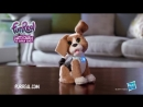 Говорящий щенок Чарли FurReal Friends от Hasbro (1)