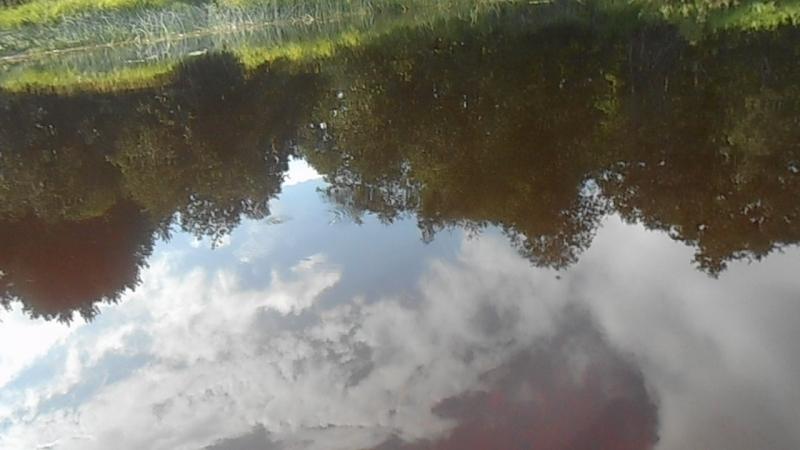 9. Небо в реке - ноги в воде! В Устье-Кубенском районе у Бени Играева.. ВидеоМИГ