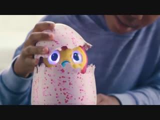 Интерактивная игрушка Hatchimals - Дракоша - Пингвинчик (Питомец Хетчималс, вылупляющийся из яйца)