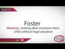 DV vocabulary - E65 Foster