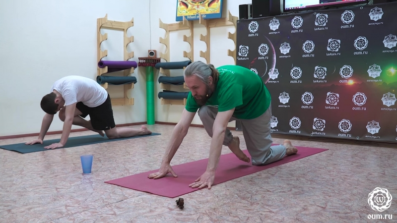 Прогибы, практика для развития альтруизма(преподаватель йоги Александр Терентьев)