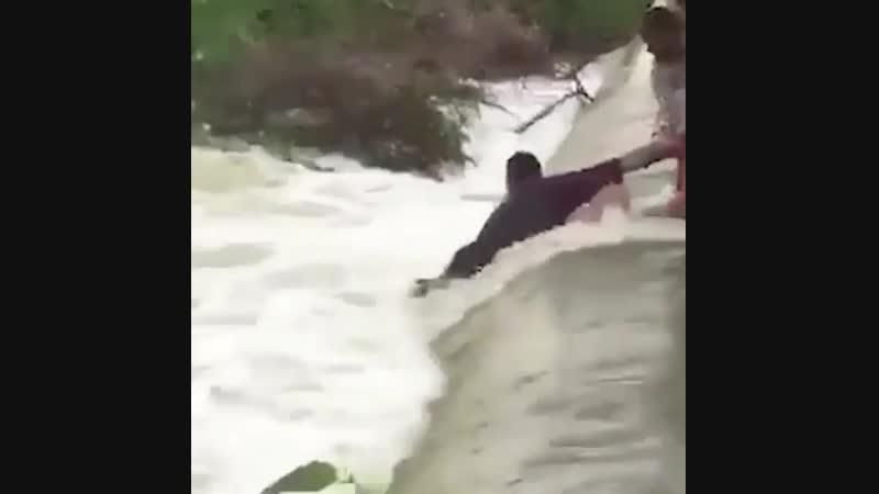 Спасли тонущего пса..