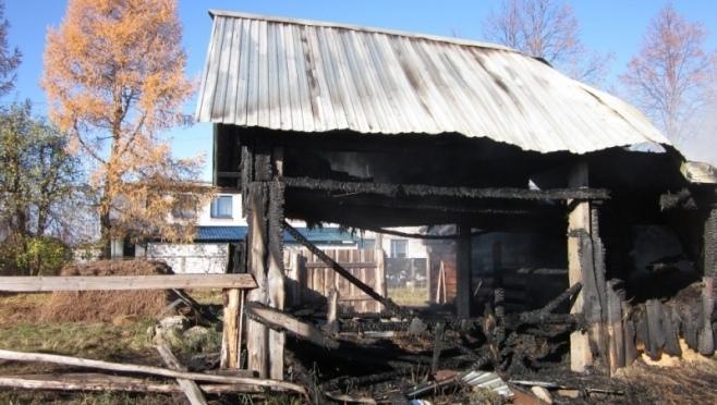 В селе Красный Яр сгорел домашний скот.