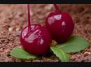 Пирог с вишнями «Наслаждение» | Больше рецептов в группе Десертомания