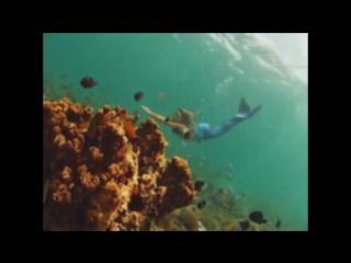 33-летняя Ханна Фрейзер работает русалкой в аквариуме города Сиднея - это работа ее мечты.