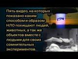 Пять видео на которых показано каким образом и способом НЛО похищяют людей и животных.