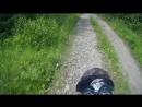 Honda cb400sf легкое бездорожье
