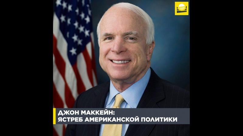 Джон Маккейн — ястреб американской политики