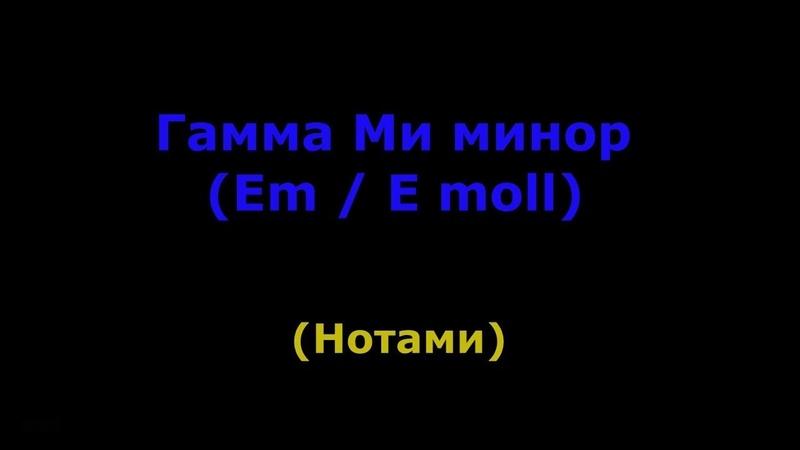 Гамма Ми минор одно октавная (ноты)