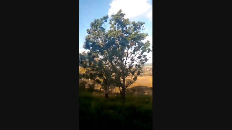 Video_2018_11_05_12_27_26.mp4