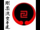 Morio Higaonna Goju ryu Karate
