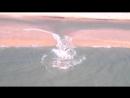 Будьте осторожны на морях Это природное явление уносит сотни человек в год
