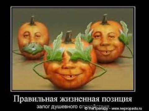 Плешивый щёголь, враг труда...над нами властвовал тогда (А.С. Пушкин)