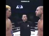 Легенда кикбоксинга - Гохан Саки скоро проведет свой 2 бой в UFC