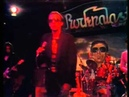 Graham Parker And The Rumour - Live at Rockpalast