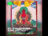 Буддийский монах-диджей читает мантры под техно и устраивает в храме световое шоу.