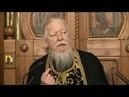 Протоиерей Димитрий Смирнов. Проповедь о совпадениях в жизни человека