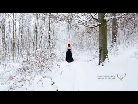 ECHO OF SILENCE - Sergey Grischuk