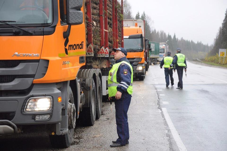 18—24 марта: Операция «Опасный груз» и «Пешеход» в Подмосковье