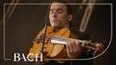 Bach - Cello Suite No. 6 in D major BWV 1012 - Malov   Netherlands Bach Society