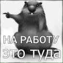 Алла Максимова фото #23