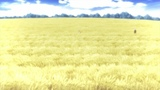 Dream In A Wheat Field $#120120 #coub, #коуб