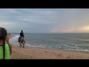 первый раз каталась на лошадке