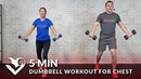 5-минутная тренировка груди с гантелями. 5 Minute Dumbbell Workout for Chest - Home Chest Workout Routine Exercises for Men Women