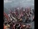 Китайское восстание машин