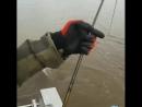 Сом сломал спиннинг и сбежал. Река Амур, сентябрь 2018