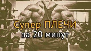 Как накачать плечи? Техника 4 упражнений на проработку плеч rfr yfrfxfnm gktxb? nt[ybrf 4 eghf;ytybq yf ghjhf,jnre gktx