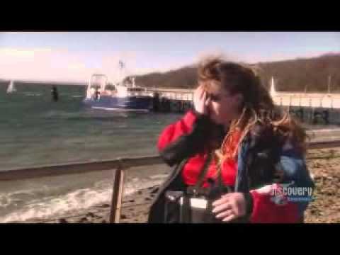 Robochick Cheri Robertson Bionic Woman Dobelle Vision