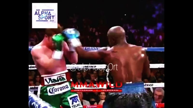 Floyd Mayweather vs Canelo Alvarez ALPHA SPORT
