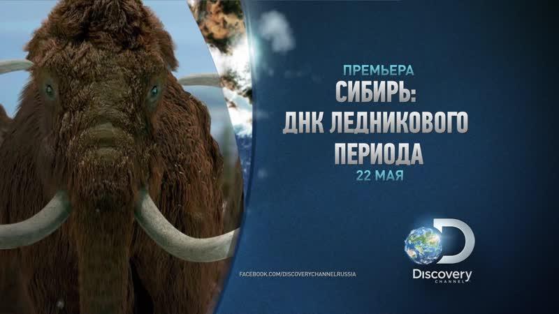 Сибирь ДНК Ледникового периода
