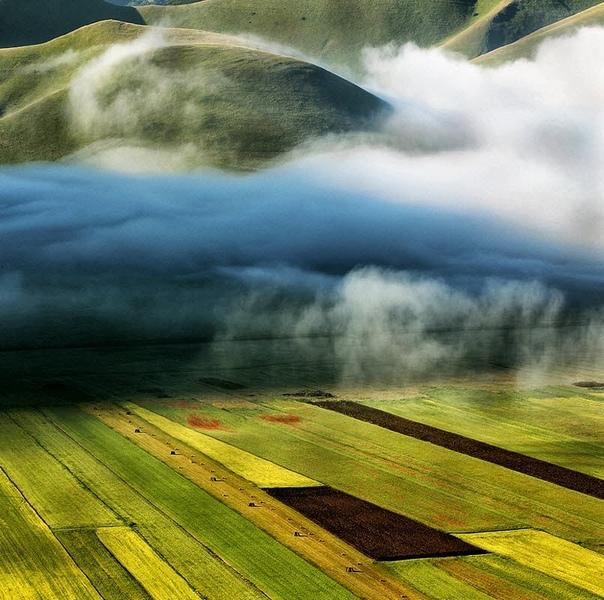 Туман над полями
