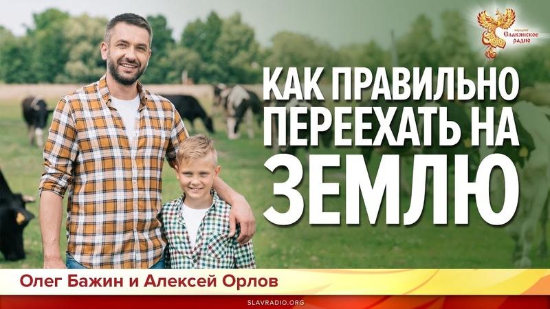 Как правильно переехать на землю? Олег Бажин и Алексей Орлов.