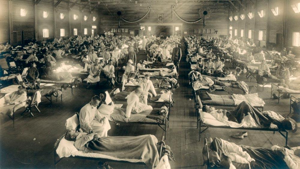 Пандемия гриппа 1918–1919 гг.