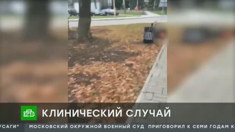 CHP_kazakova_kaliningrad.mp4